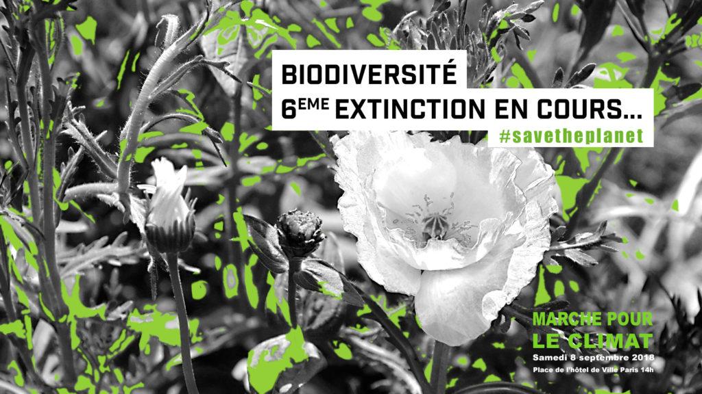 Biodiversité 6eme extinction en cours... #savetheplanet