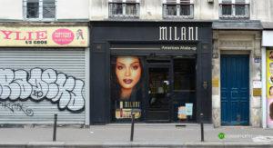 2018 Milani