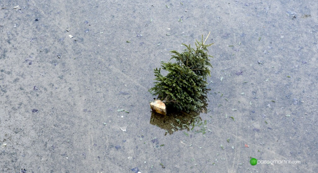 Le Canal ST Martin objets retrouvés